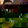 Anidia Aparecida Gomes da Silva